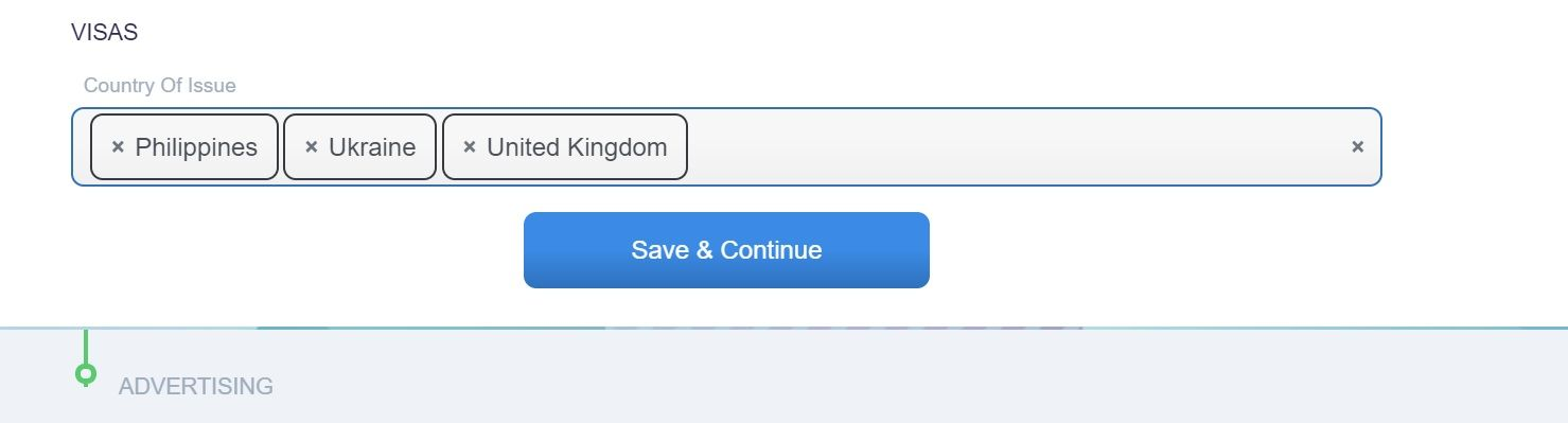 screenshot of Martide website showing the visa section and save button